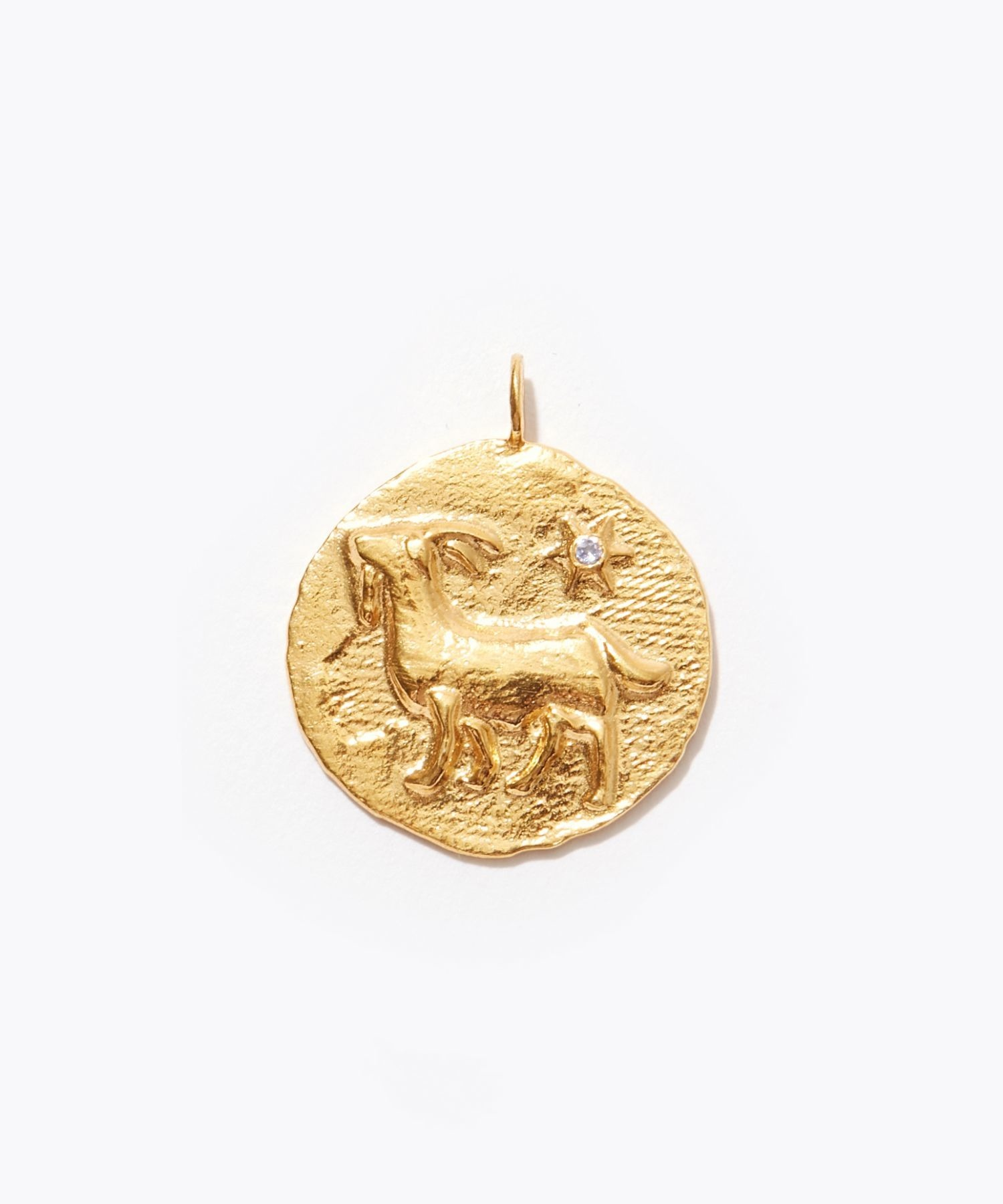 [constellation] Capricorn big coin charm
